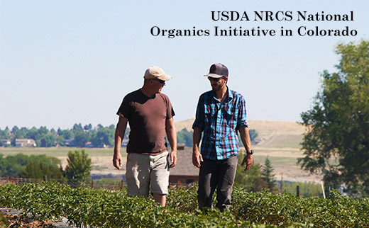 NRCS field staff with Red Wagon Organics Farm Owner