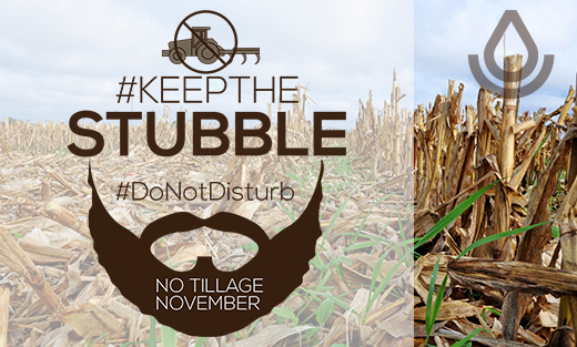 Web Graphic for No Tillage November