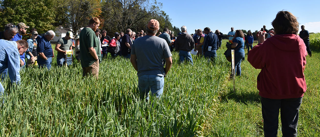 Cover crop plots FY18 Cover Crop Conference
