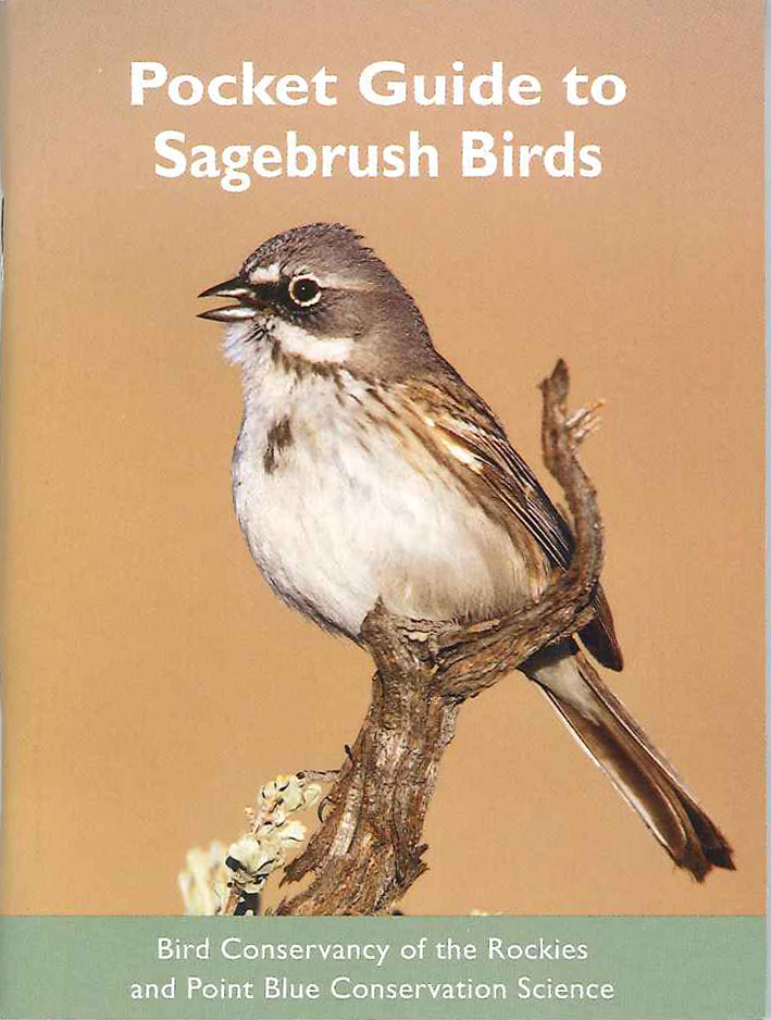 Pocket Guide to Sagebrush bird