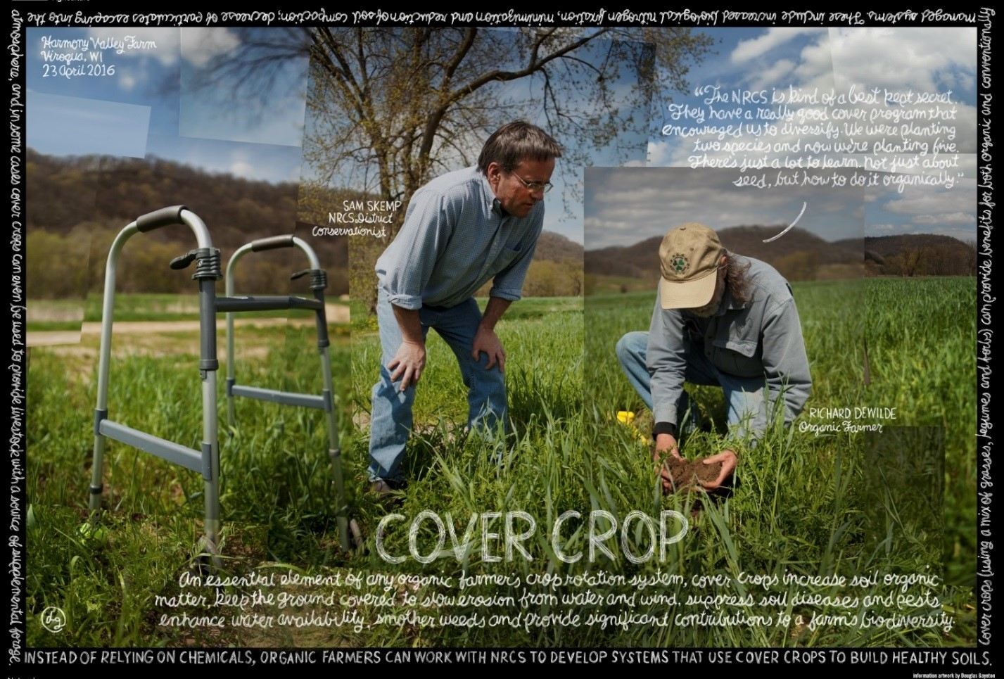 Cover crop photo
