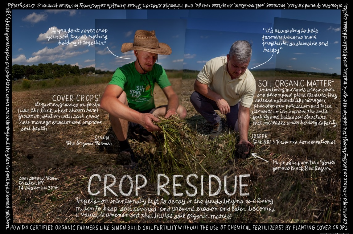 CROP RESIDUE POSTER_cropped