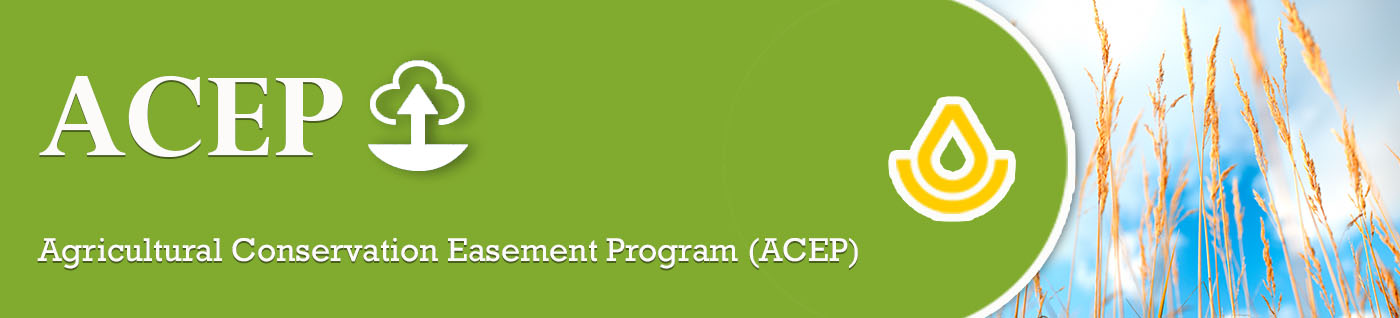 Agricultural Conservation Easement Program Heading