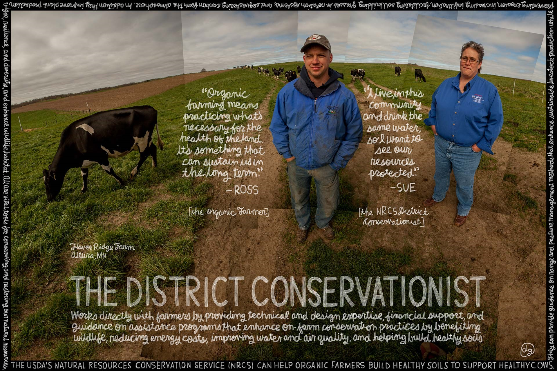 District Conservationist image of two men and a cow