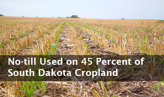 Banner graphic: No-till used on 45 percent of South Dakota Cropland