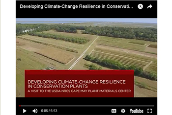 Image of Developing Climate-Change Resilience in Conservation Plants YouTube Video