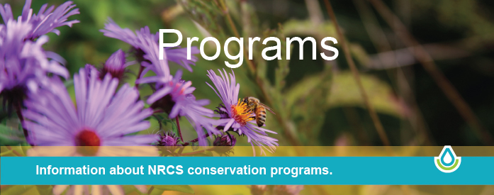 Information about NRCS conservation programs.