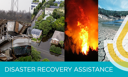 Disaster recovery image