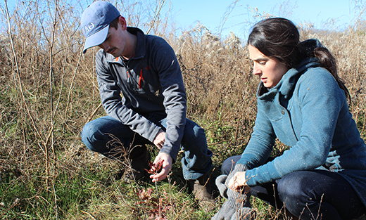 Knox County land owner Matthew Dixon and Kylie Schmidt, of Green Forest Works (GFW), examine the new vegetative growth on the Dixon Farm.