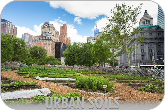 Main photo for the Urban Soils Team.