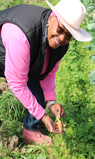 Dr. Ayers-Elliott uproots a growing carrot to show how it is still growing in the high tunnel.
