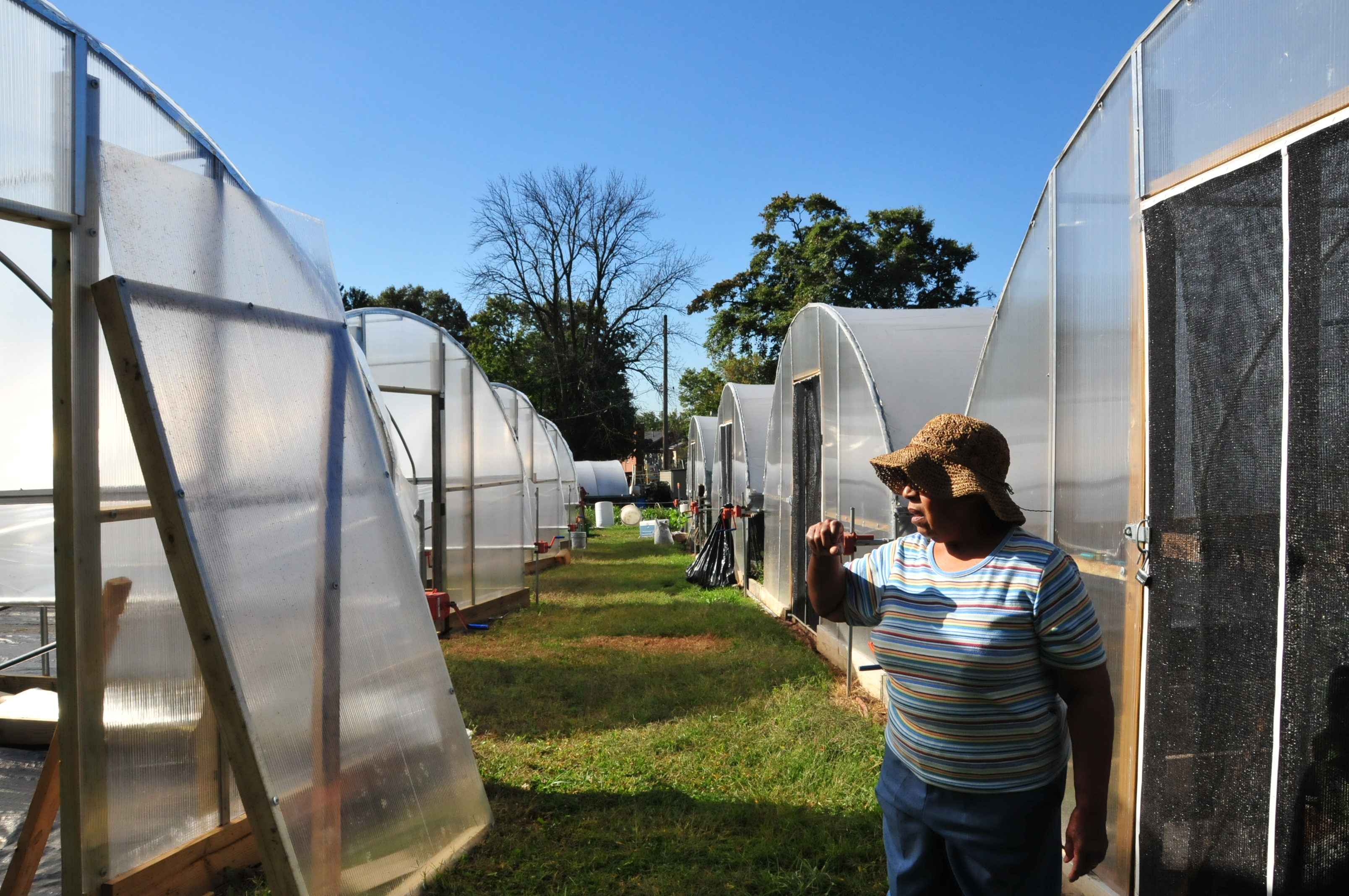 Lavette Blue discusses the high tunnels built on her Baltimore City farm, The Greener Garden.