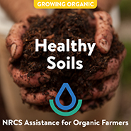 NRCS-HEALTHY%20SOIL_TILE