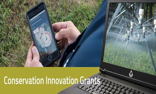 Picture of Conservation Innovation Grants (CIG) Banner