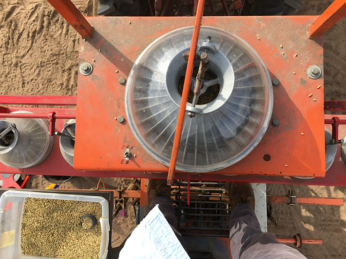 Image of a precision cone seeder used to accurately and precisely plant pollinator seed.