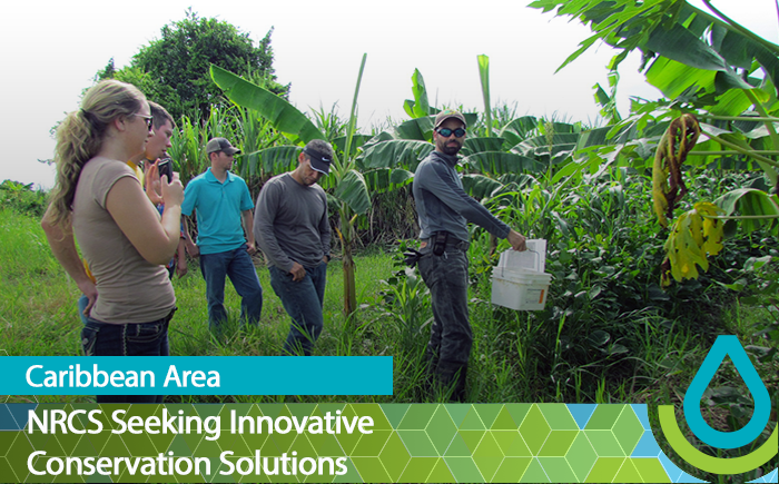 NRCS Seeking Innovative Conservation Solutions