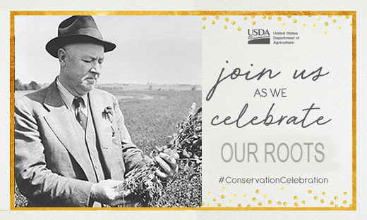 Conservation Celebration: Our Roots