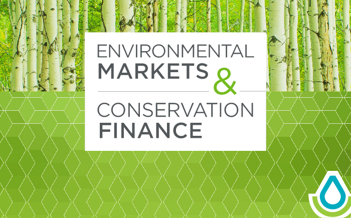 Environmental Markets and Conservation Finance
