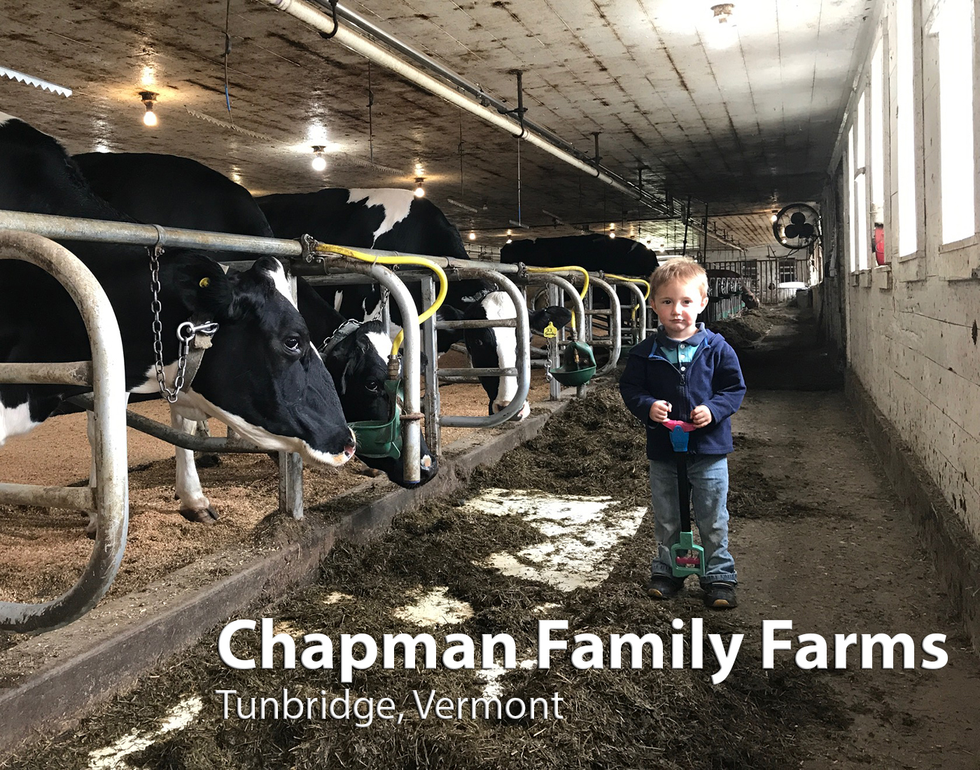 Chapman Family Farms