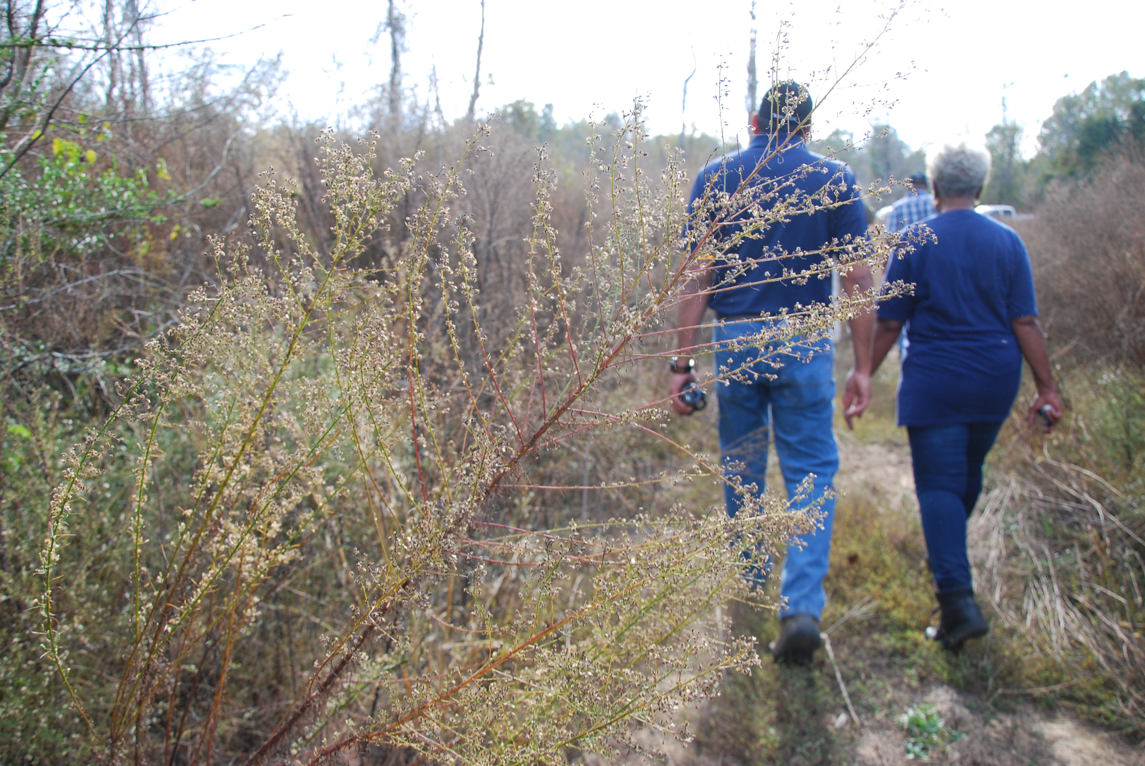 USDA-NRCS employee surveys forest lands with landowner in West Alabama.