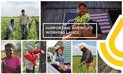 NRCS - Supporting America's Working Lands