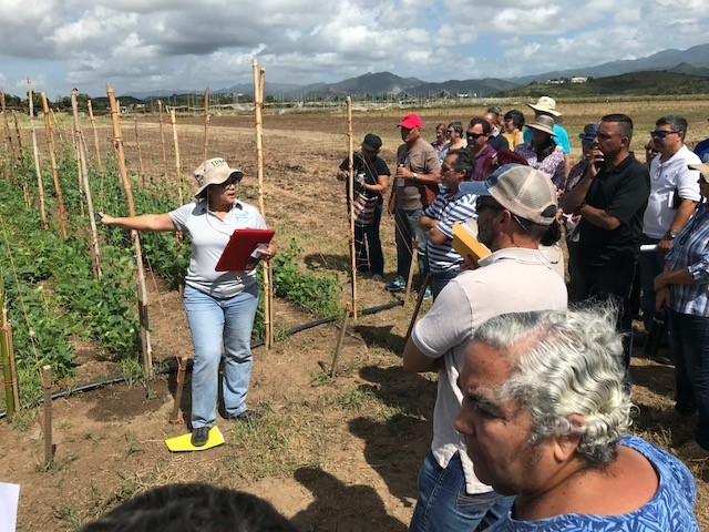 CIG grantee, Dr. Ermita Hernandez, presents project to PR Vegetable & Grains Industry Meeting attendees at Juana Diaz Ag Experiment Station April 17 2018.