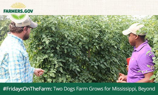 On Two Dogs Farm in Flora, Mississippi, where Van Killen is working to provide fresh, local food in his community and beyond.