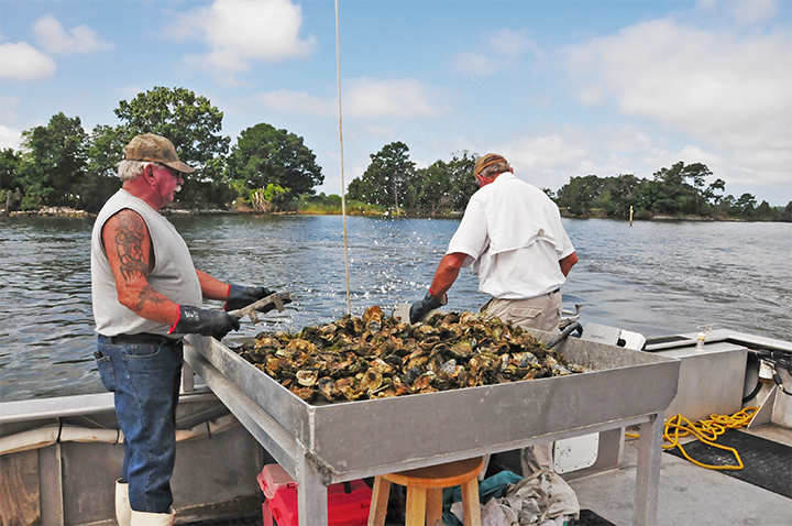 Bobby Leonard utilizes the Natural Resources Conservation Service's Environmental Quality Incentives Program to help restore the Chesapeake Bay through oyster habitat restoration efforts.