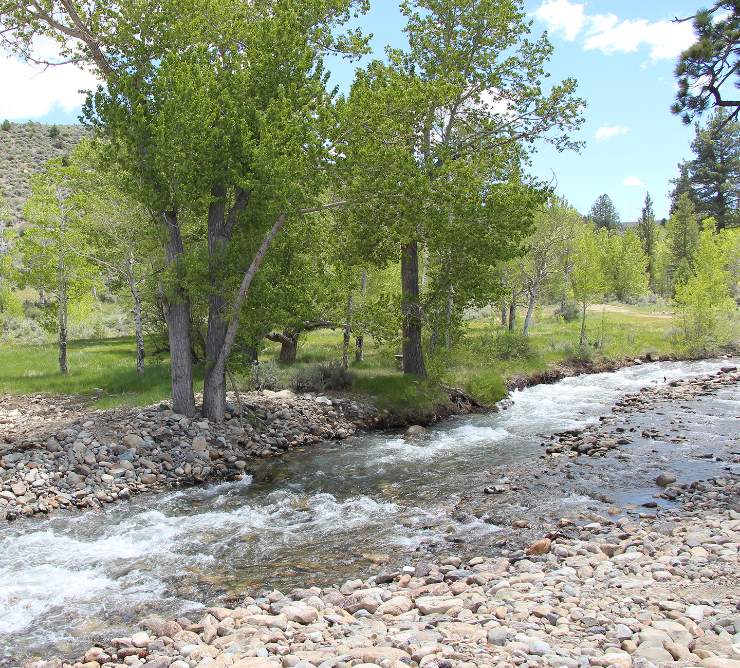 scenic creek at Sceirine Point Ranch