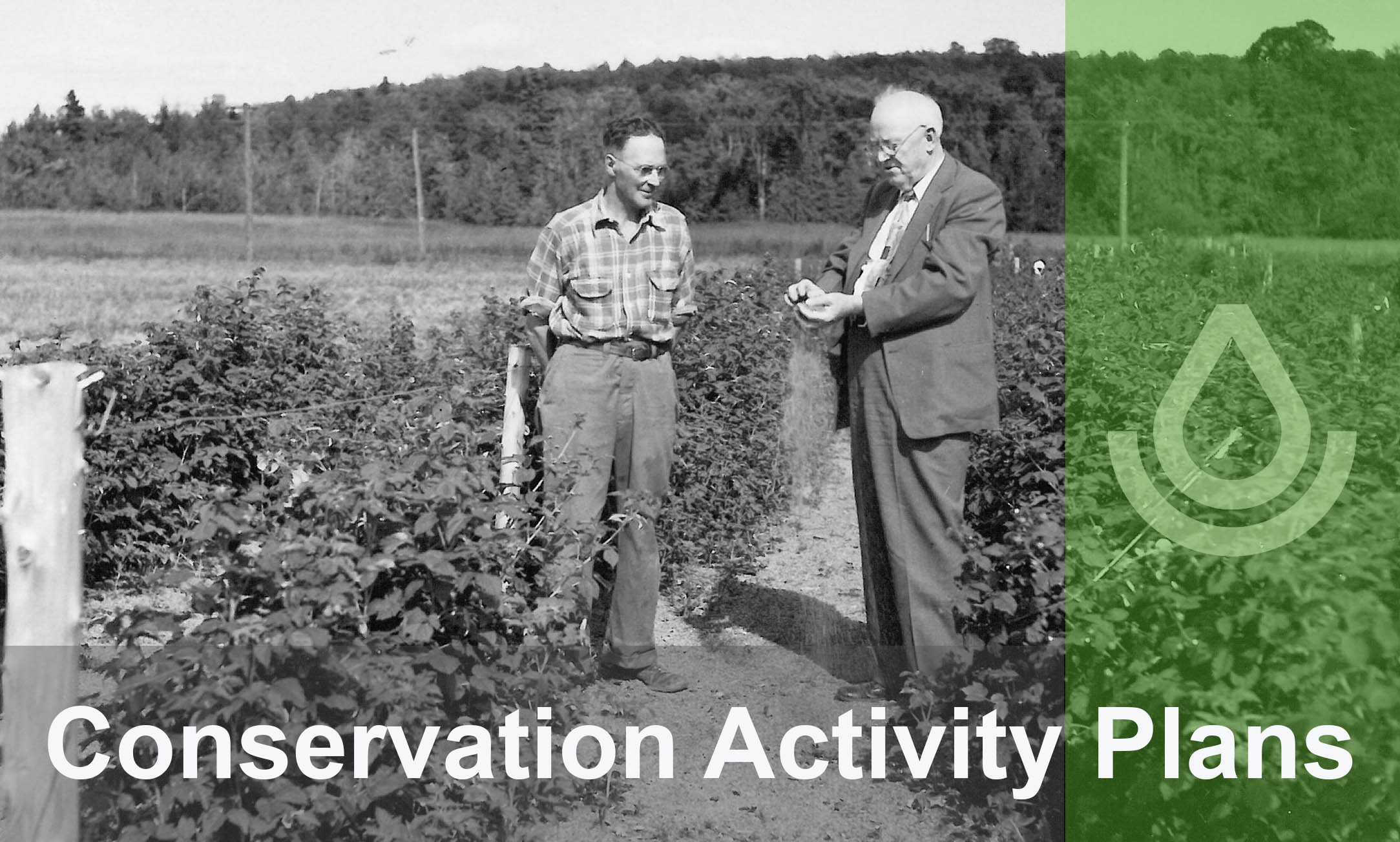 conservation activity plans photo on EQIP site