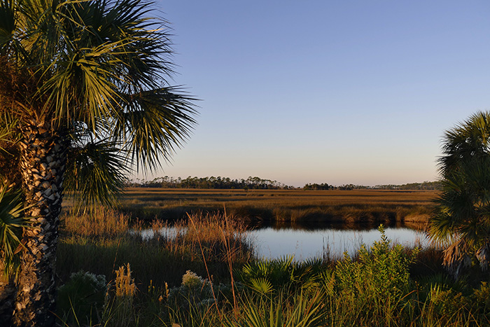 Sign up for Wetland Reserve Easements