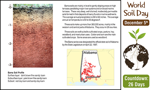 Profile and distribution map of Alabama's State Soil.
