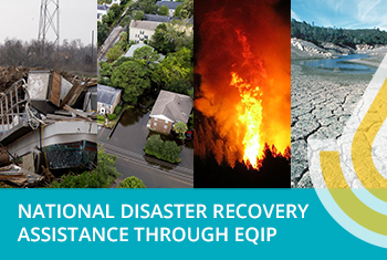 Disaster Recovery Assistance through EQIP