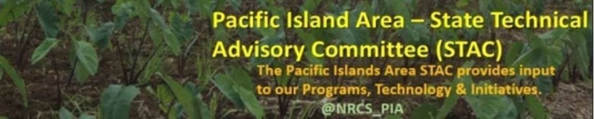PIA STAC - The Pacific Islands Area STAC provides input to our Programs, Technology & Initiatives.