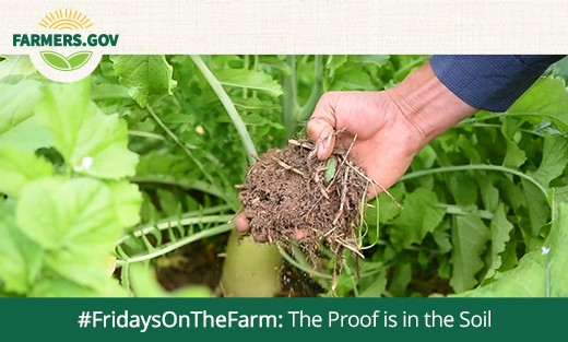 FridaysonTheFarm The Proof is in the Soil