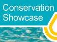 Conservation Showcase