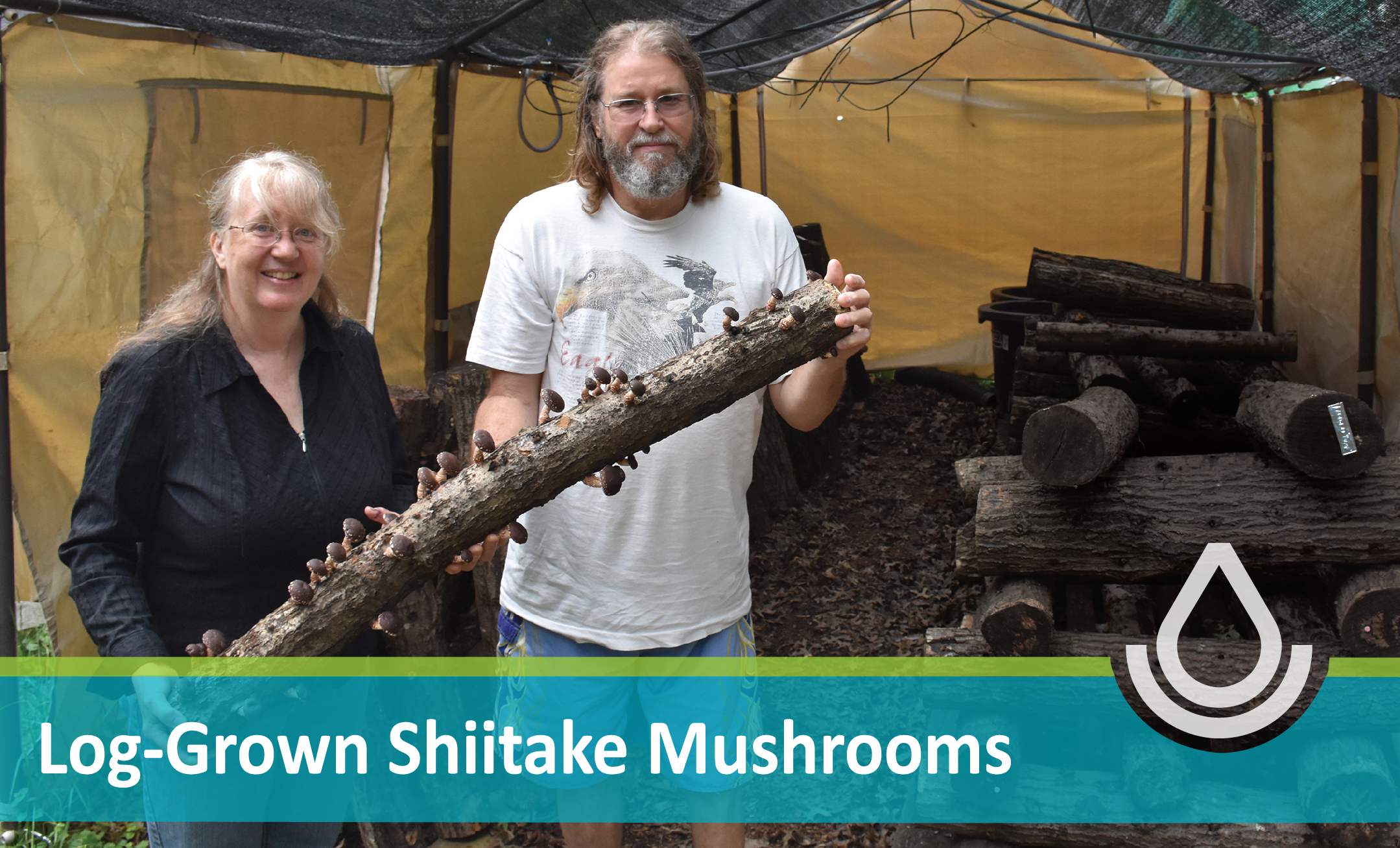 FY19 Ingrid and Paul West - Shiitakes