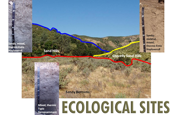 Ecological Sites photo.