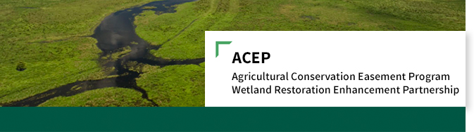 ACEP_WetlandRestoration_WebHeader