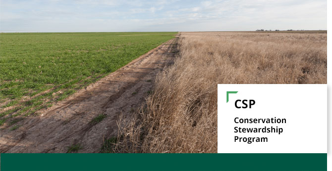 Web header for the Conservation Stewardship Program