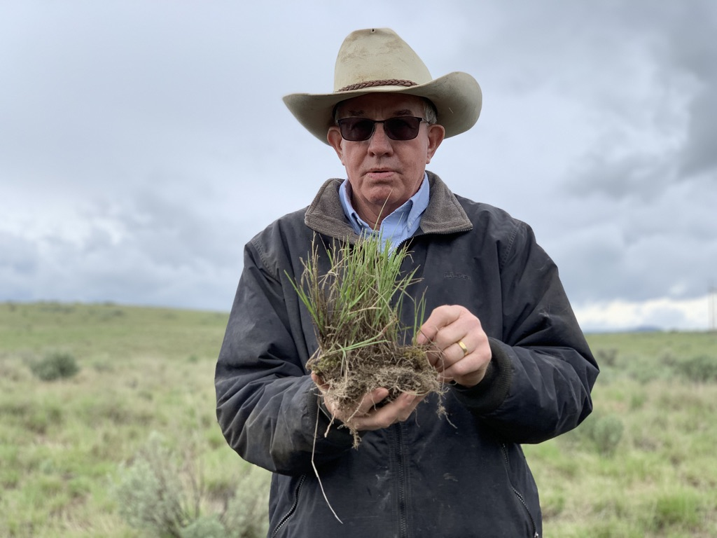 Jack Southworth with bunchgrass