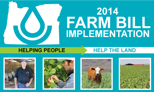 2014 Farm Bill Report
