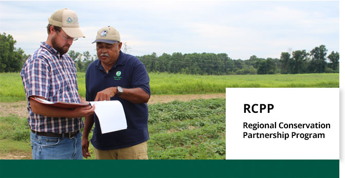 RCPP promotes coordination of NRCS conservation activities with partners that offer value-added contributions to expand our collective ability to address on-farm, watershed, and regional natural resource concerns.
