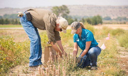 CSP is designed to help farmers and ranchers implement more robust conservation activities on their land.