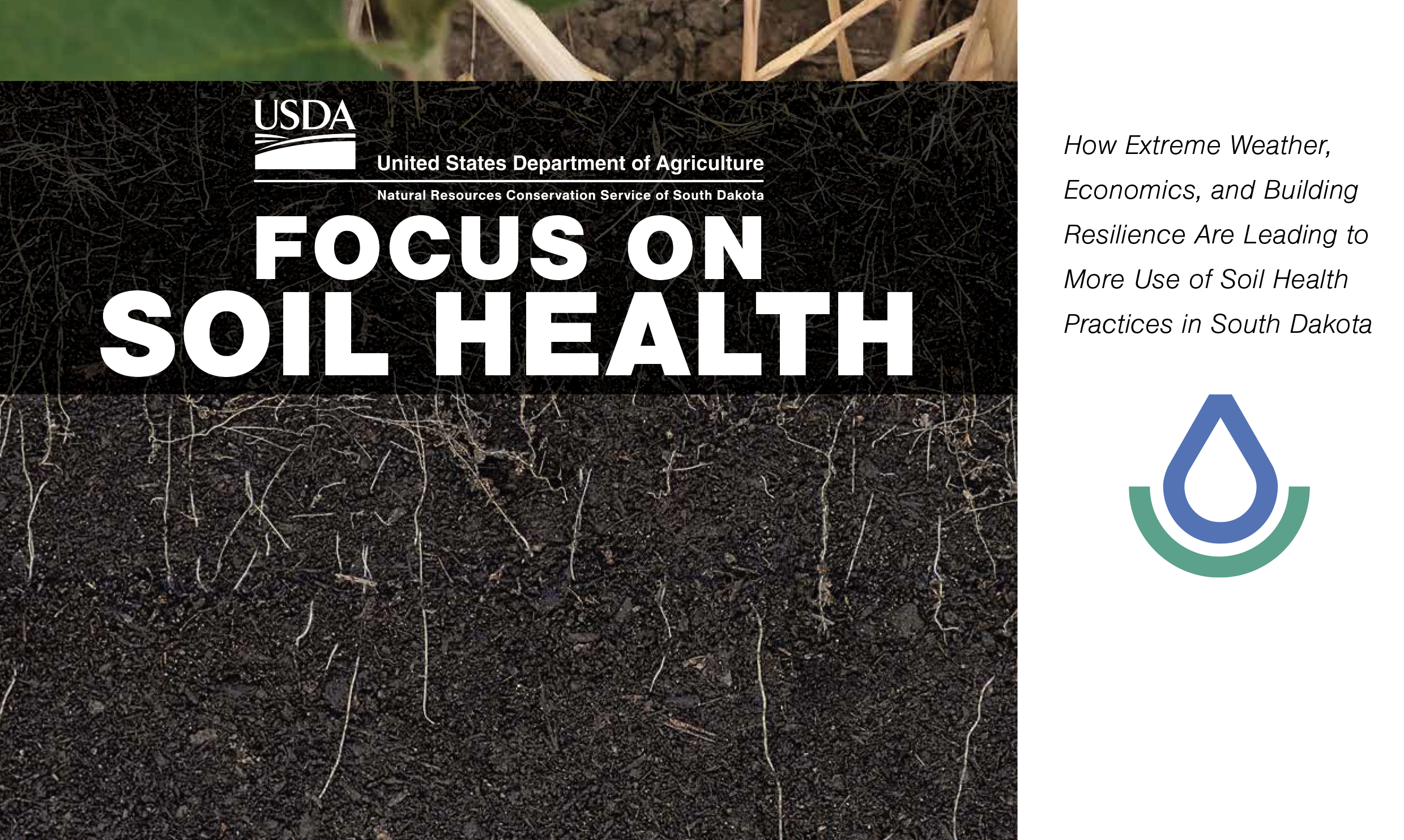 Cover photo pf the 2019 Cropping Systems Inventory report