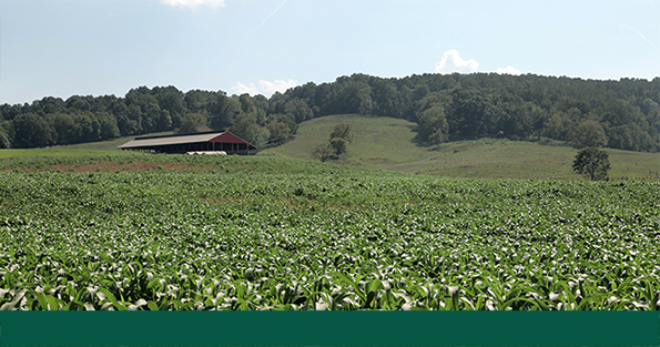 NRCS seeks public comments on ACEP interim final rule.