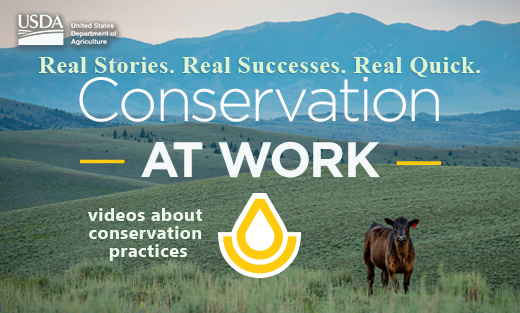 Conservation at Work Video Series