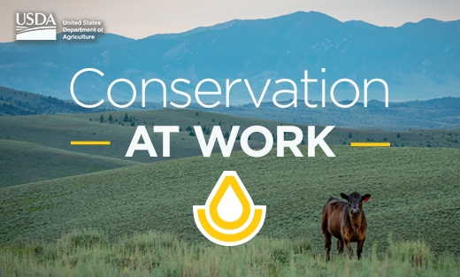 Conservation at Work Videos Toolkit.