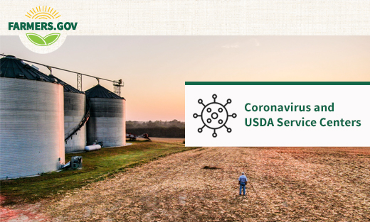 Coronavirus and USDA Service Center