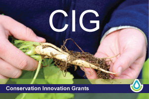 Conservation Innovation Grants (CIG)